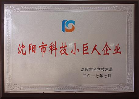 Shenyang Science  technology giant enterprise